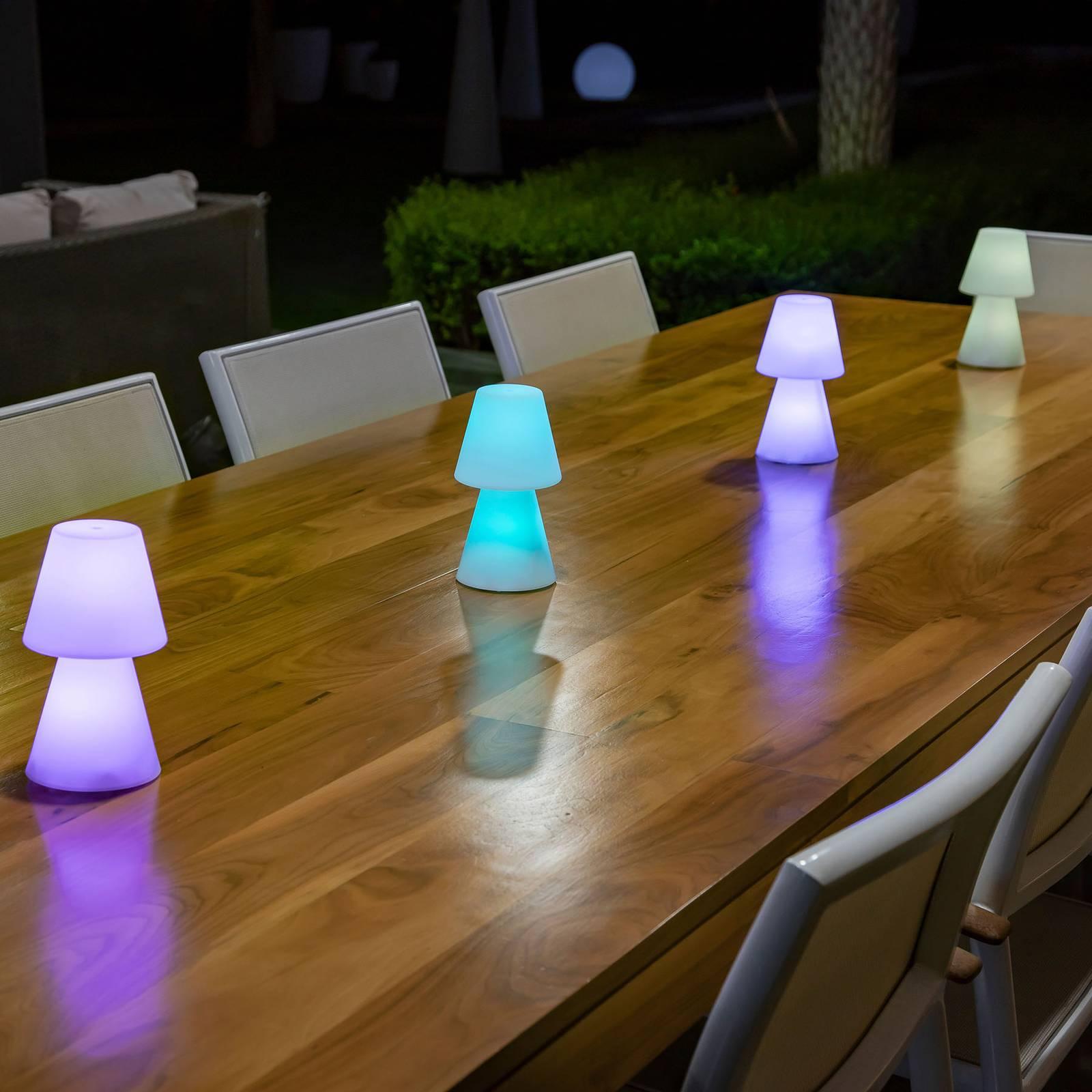 Newgarden Lola 20 -LED-pöytälamppu, akku