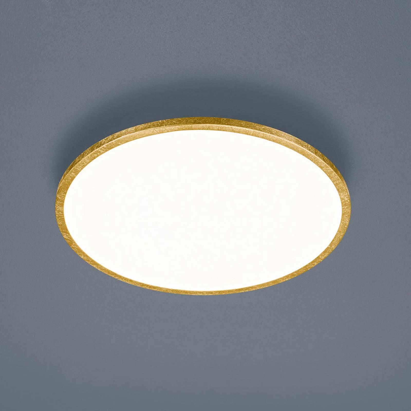 Helestra Rack LED-taklampe, dimbar, rund, gull