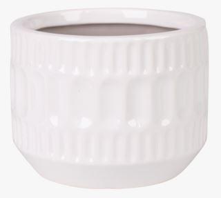 Jasmine kukkaruukku valkoinen