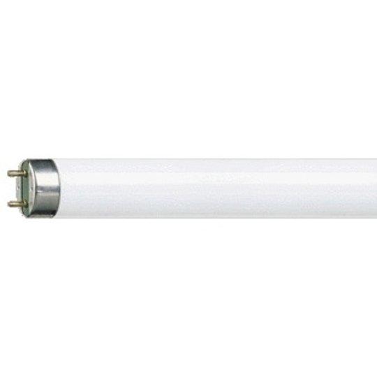 G13 T8 58 W Loistelamppu MASTER TL-D Super 827