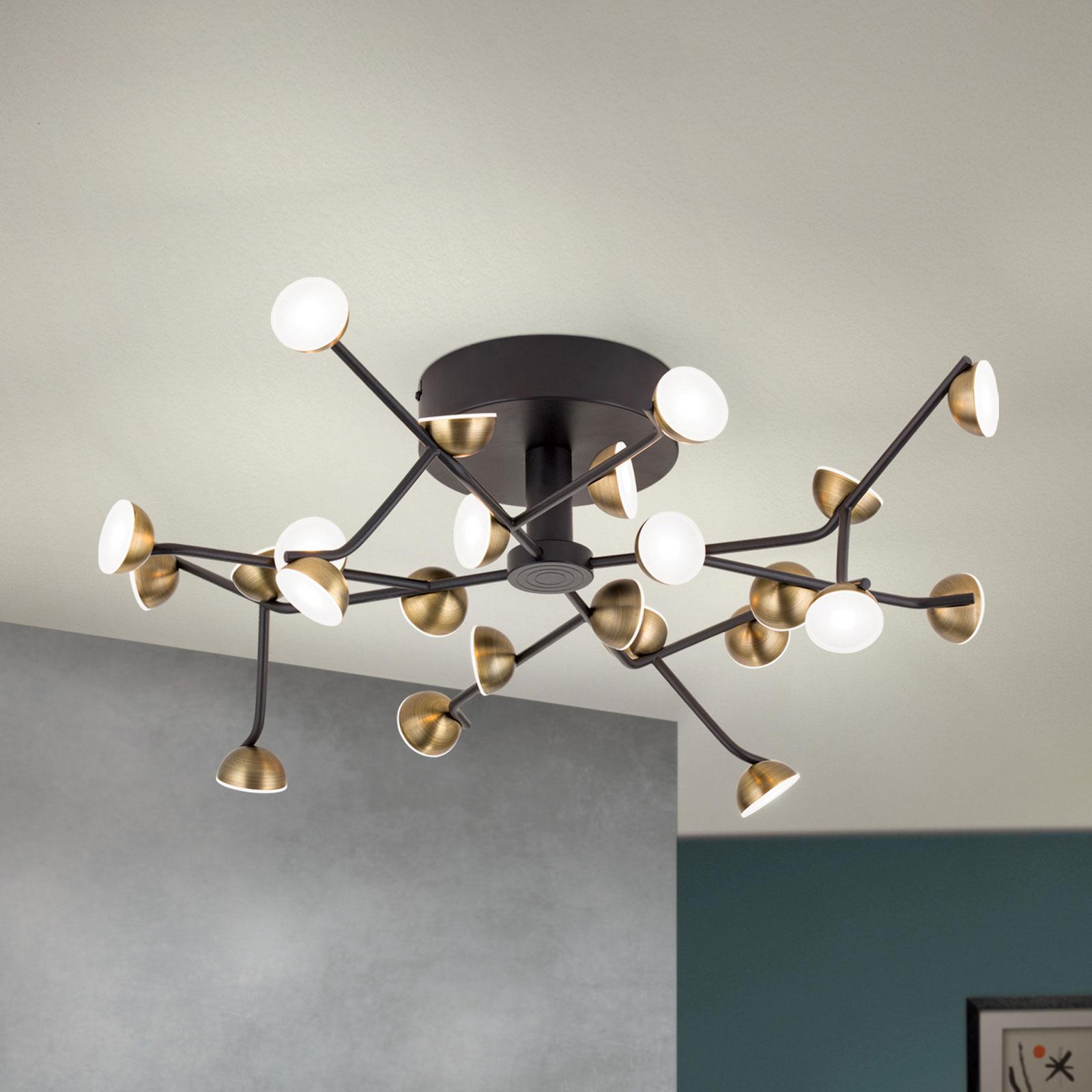 Blossom-LED-kattovalaisin, 24-lamppuinen
