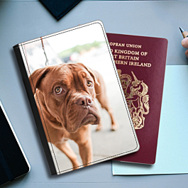 Faux Leather Passport Cover (front cover prints only)