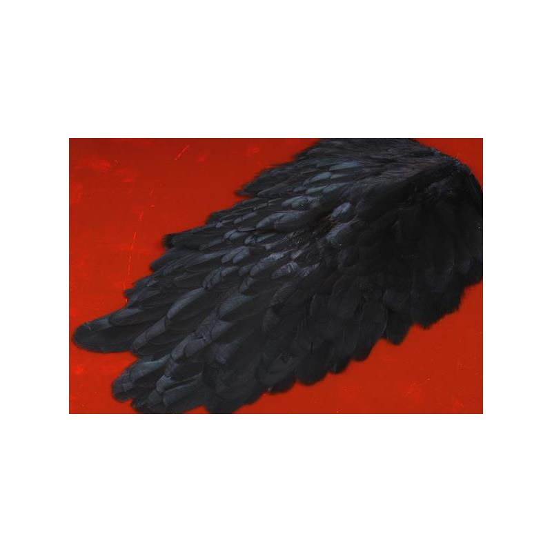 American Hen Saddle - Black FutureFly