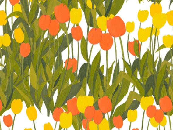 In Bloom Wallpaper Sample-Sunshine-IB1902SSS