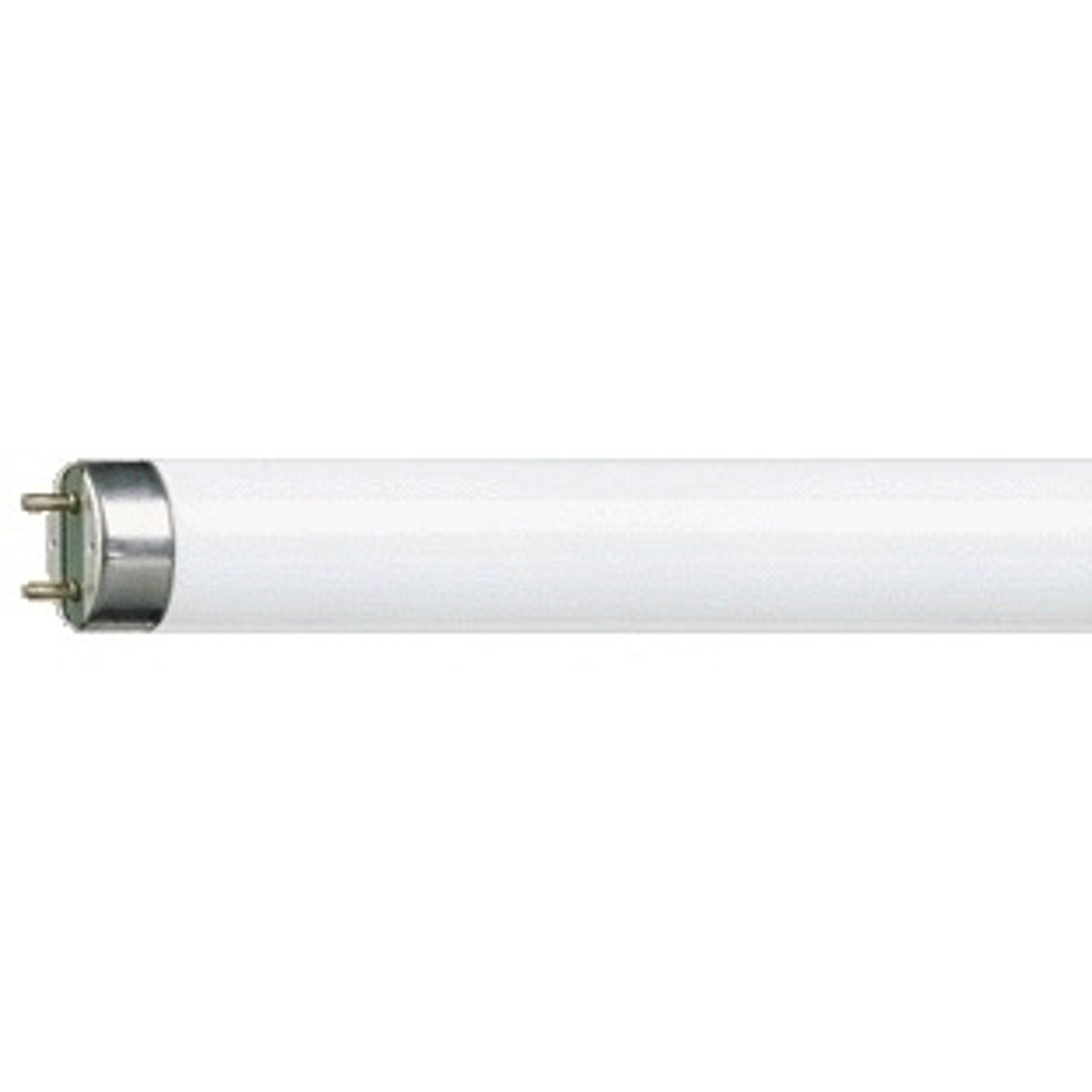 G13 T8-lyspære MASTER TL-D Super 58W/840