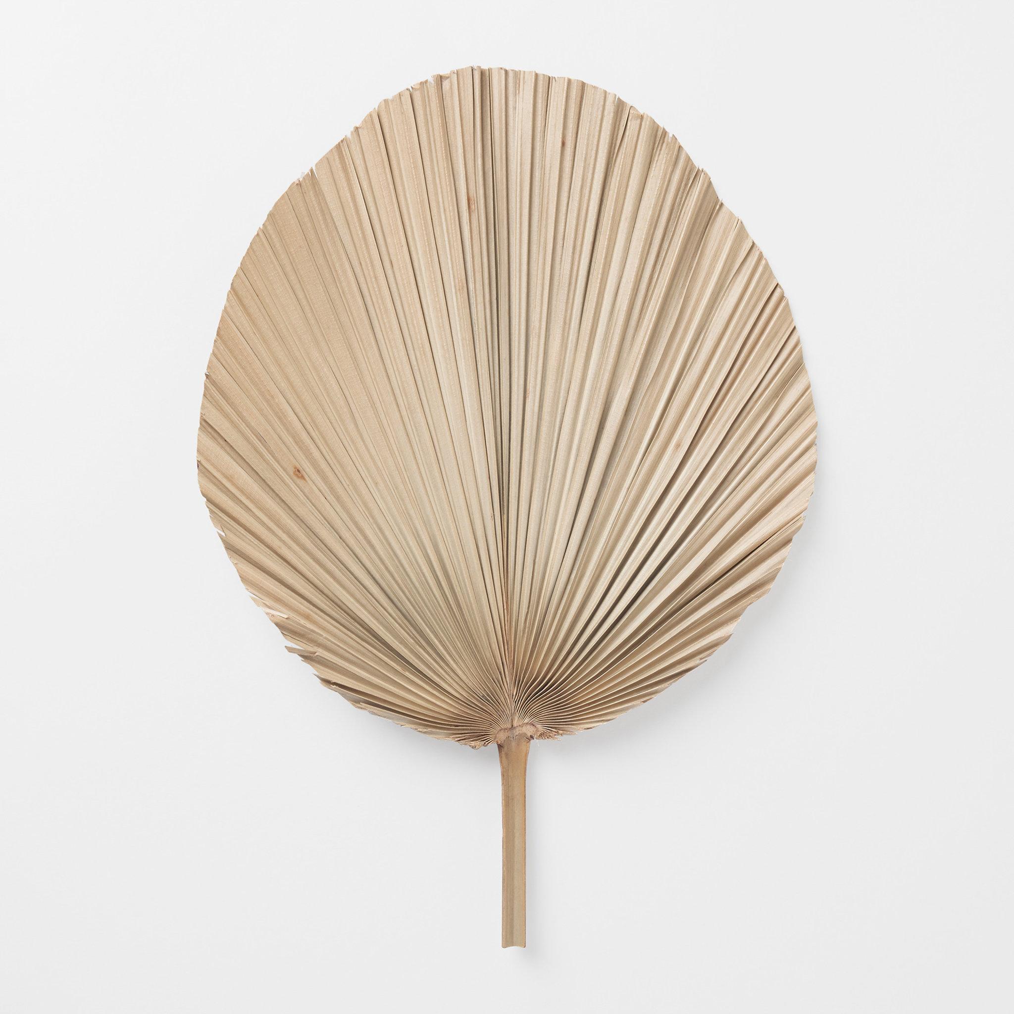 Dekorativt palmblad