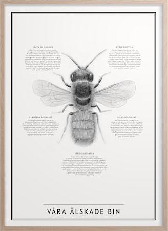 Våra älskade bin 50x70 cm