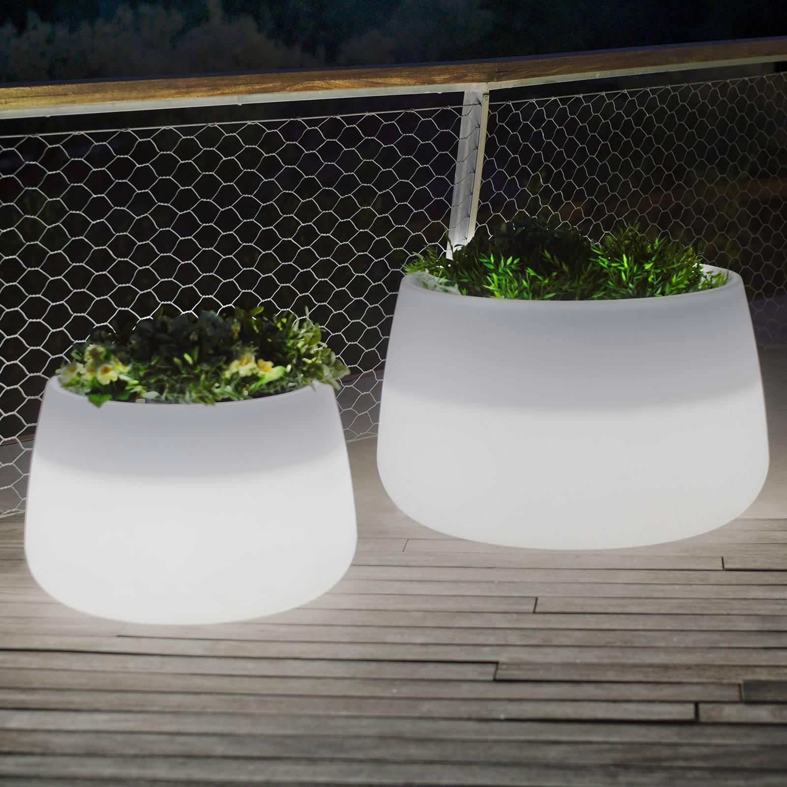 Newgarden Camelia 60 -LED-kukka-astia, akku