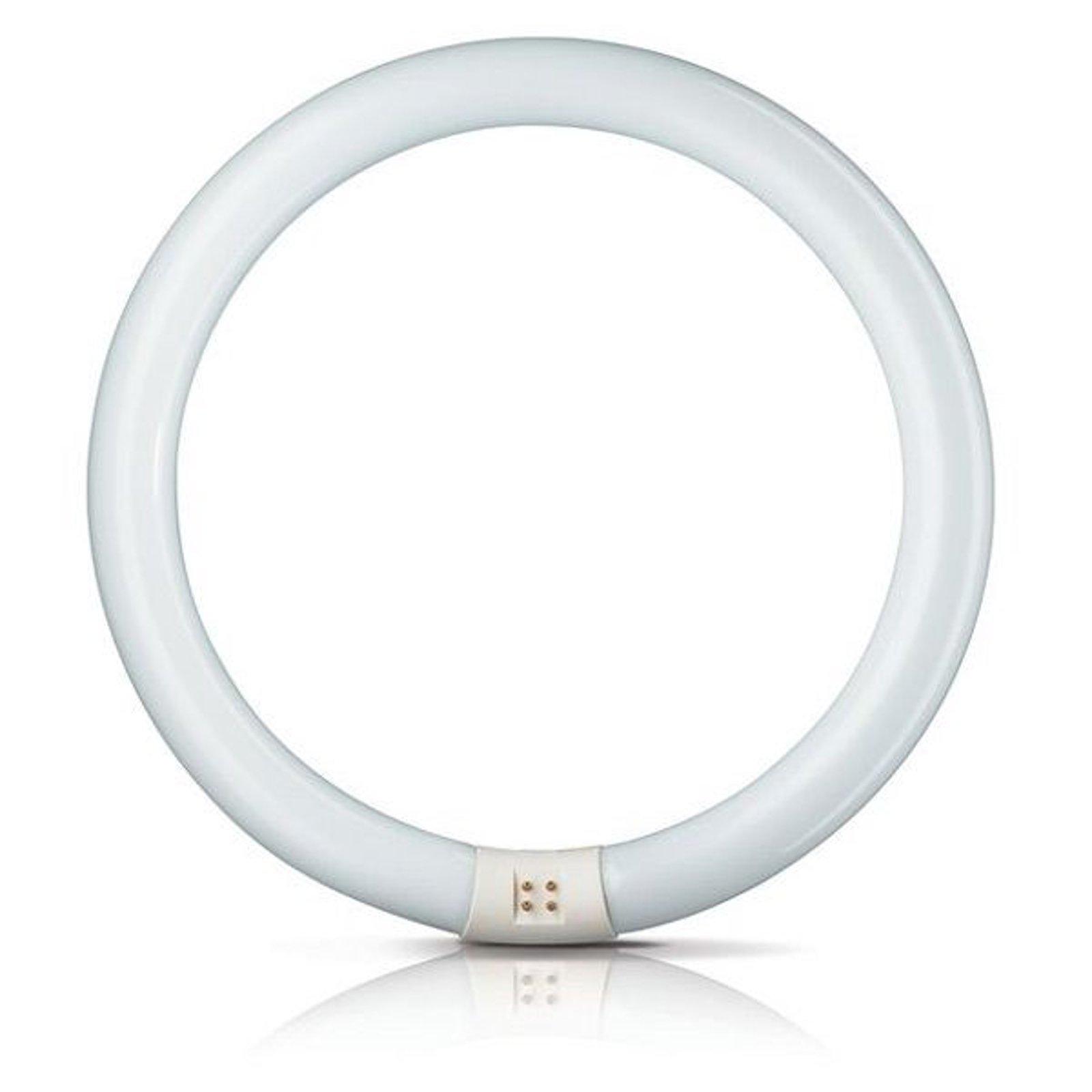 G10q 22W 840 lysstoffring Master Circular TL-E