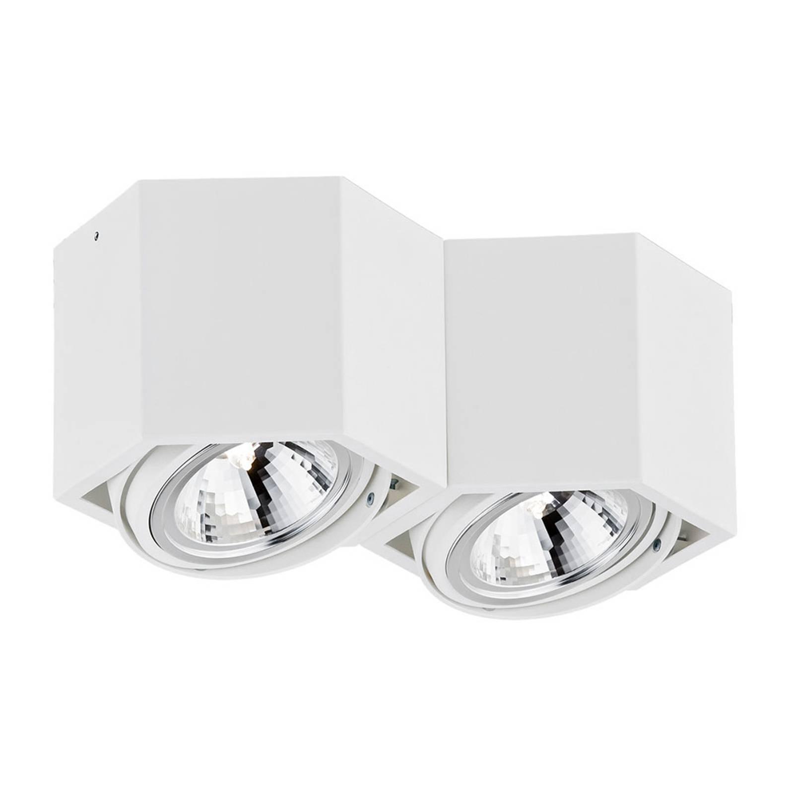 Kattospotti Elvas kääntyvä 2-lamppuinen valkoinen