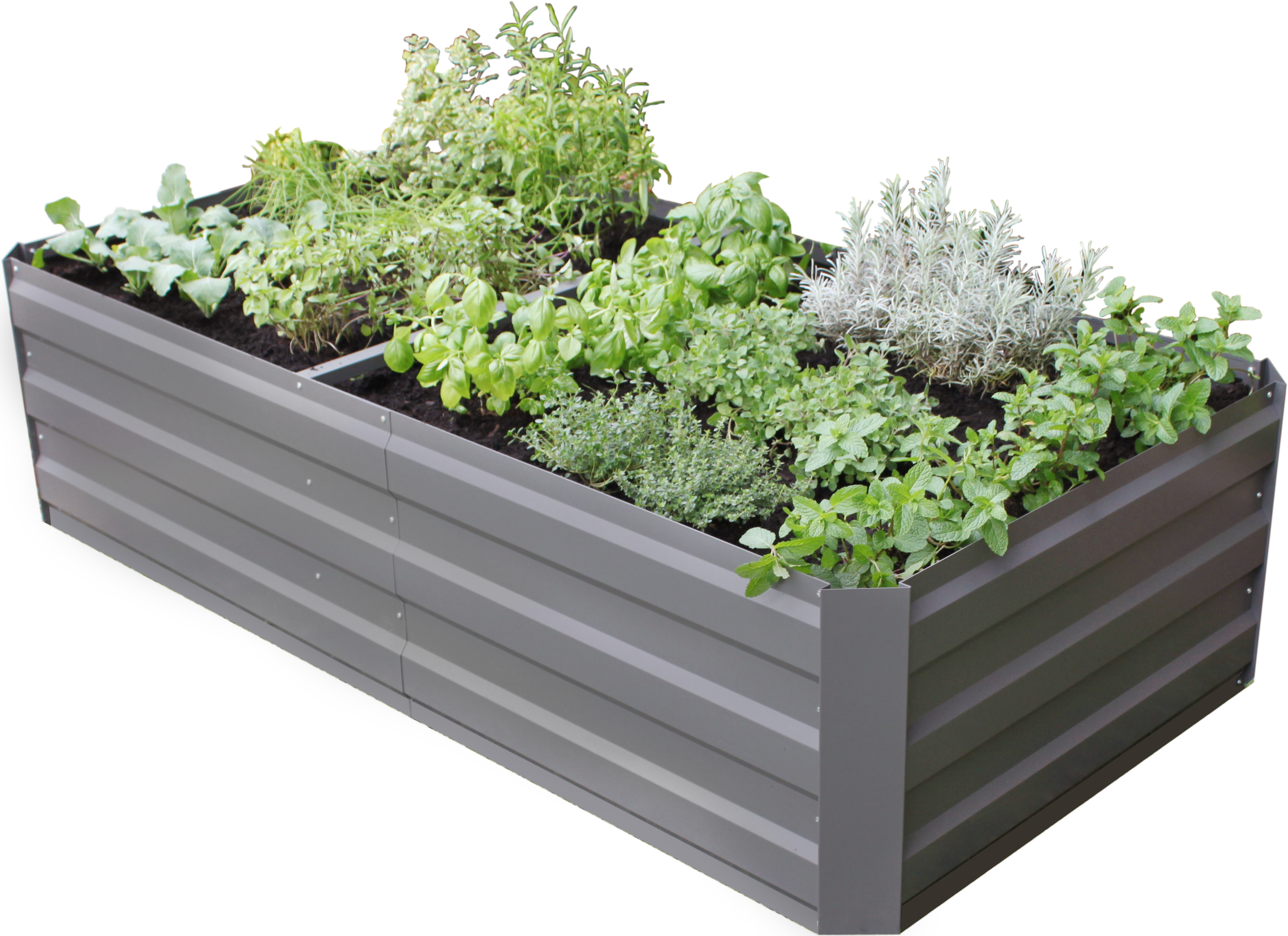 Gardenlife - Easy Raised Bed 90 x 180 cm - Large (131662)