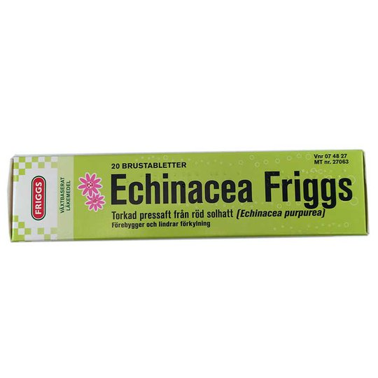Echinacea - 75% rabatt