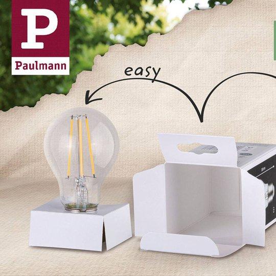 Paulmann LED-Globe E27 Inner Shape G95 4W matta