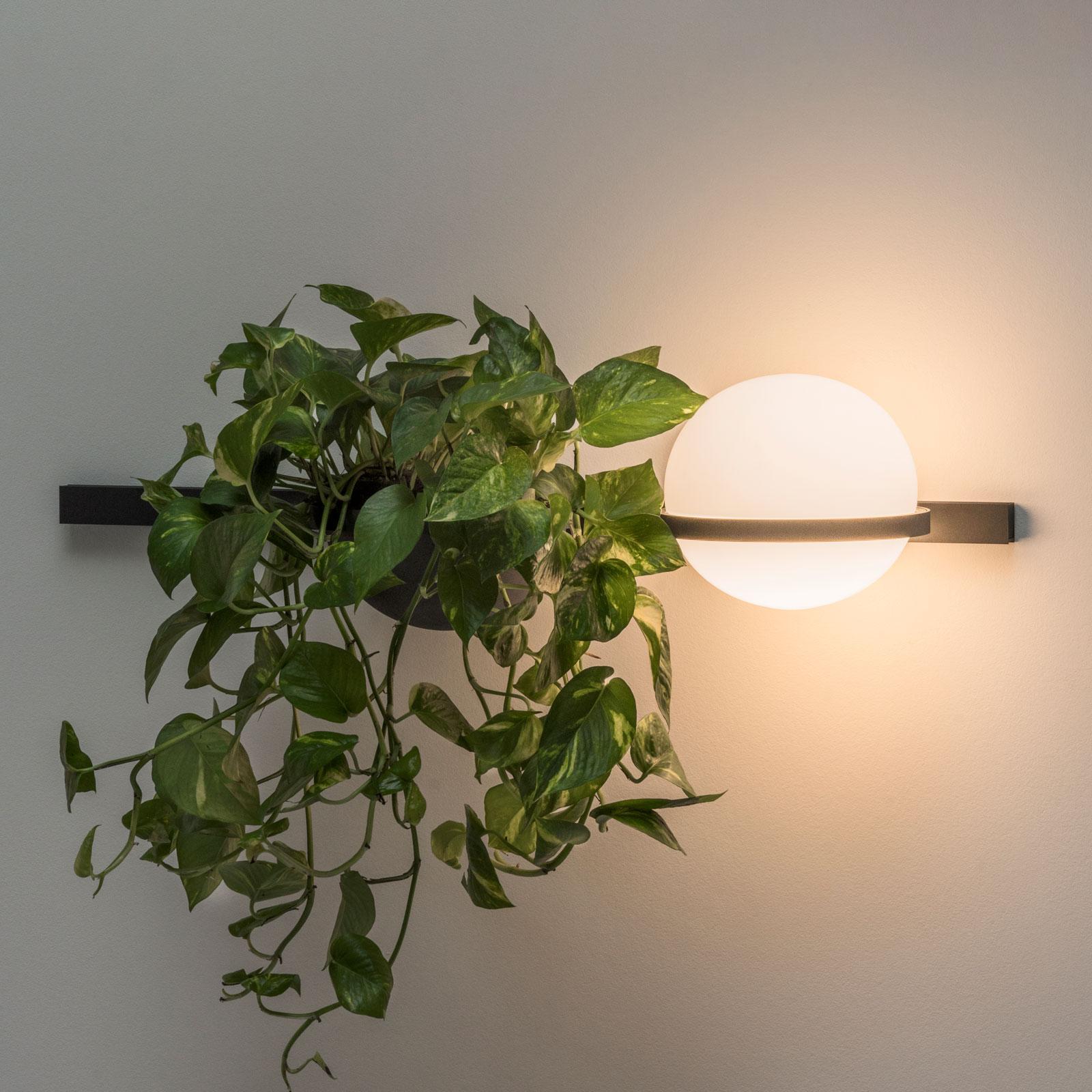 Vibia Palma 3702 seinävalo kasvinkuori grafiitti