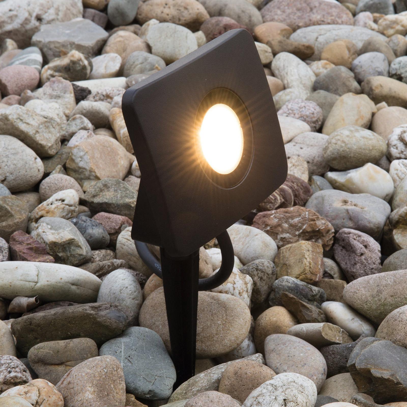 Maapiikillä - LED-valonheitin Bolton 20 W