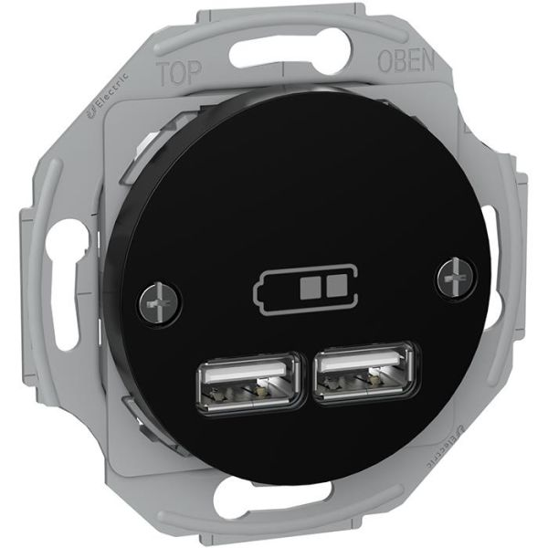 Schneider Electric Renova WDE011761 Latausasema 2 USB, musta