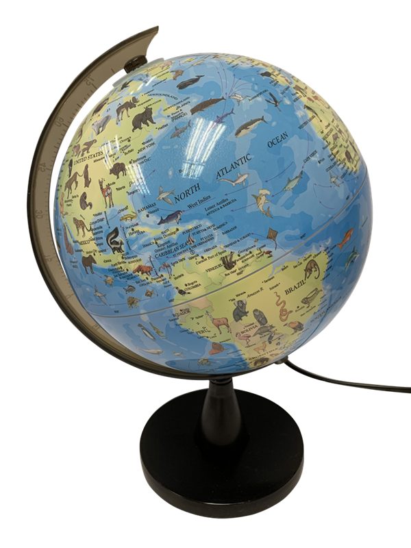 SCIENCE - Globe with animals and light 20 cm (TY6190)