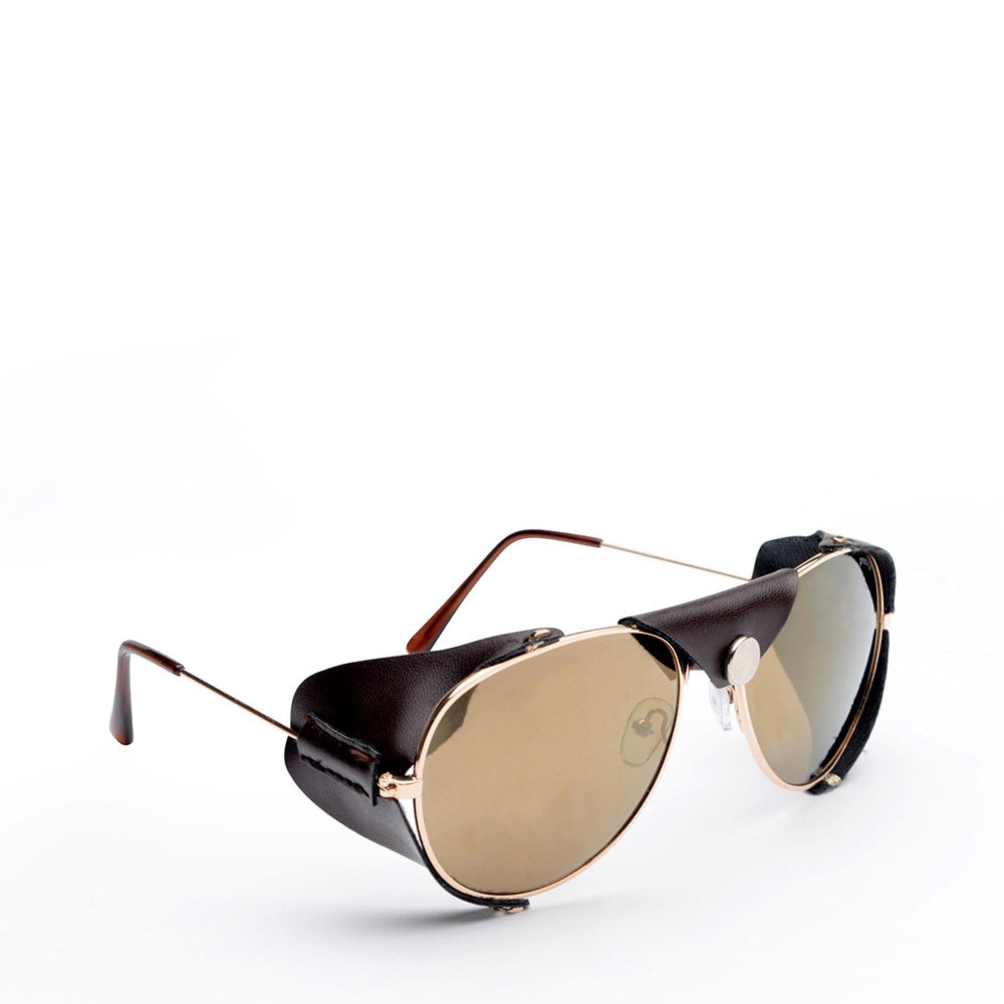 Solglasögon Auden