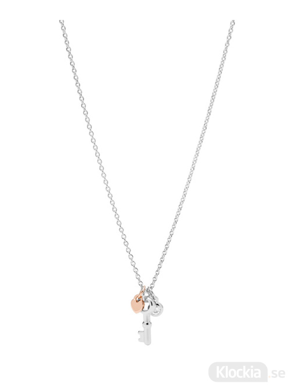 Damsmycke FOSSIL Halsband Sterling Silver JFS00467998