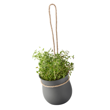 GROW-IT urtekrukke - grå