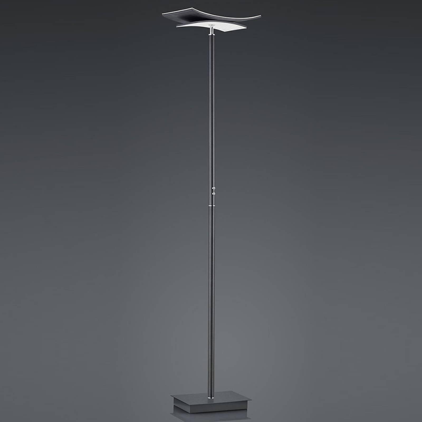 B-Leuchten Liberty LED-gulvlampe, antrasitt