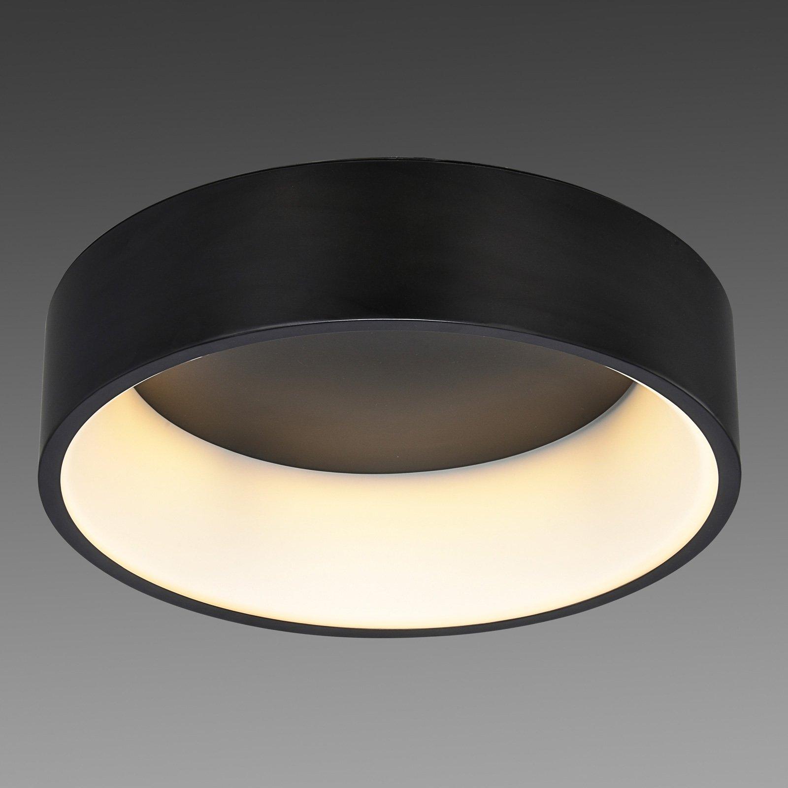 LED-taklampe Ren Ø 60 cm svart
