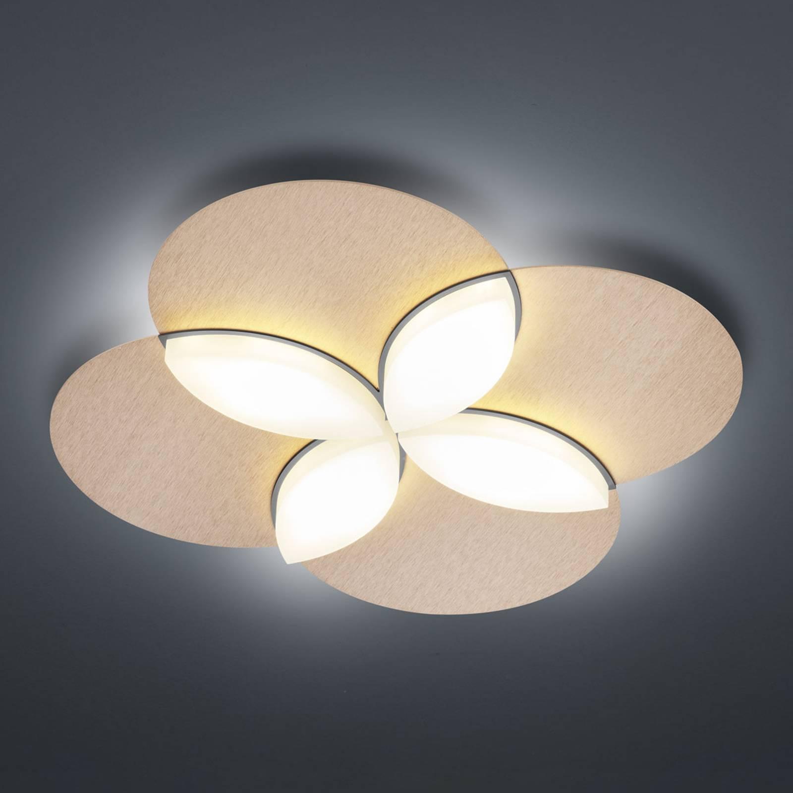 BANKAMP Spring -LED-kattovalaisin, ruusukulta