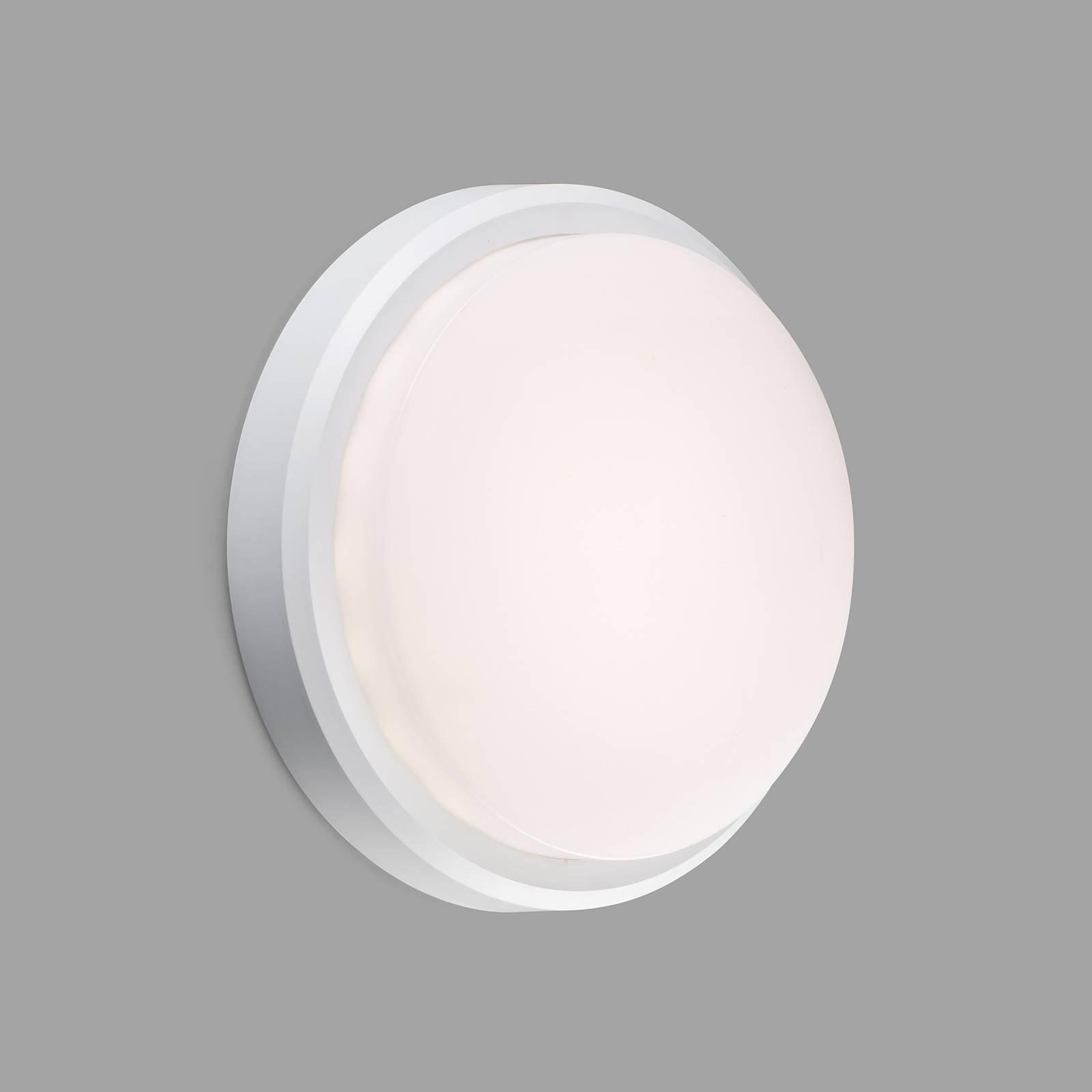 LED-ulkoseinälamppu Tom XL, IK10, valkoinen