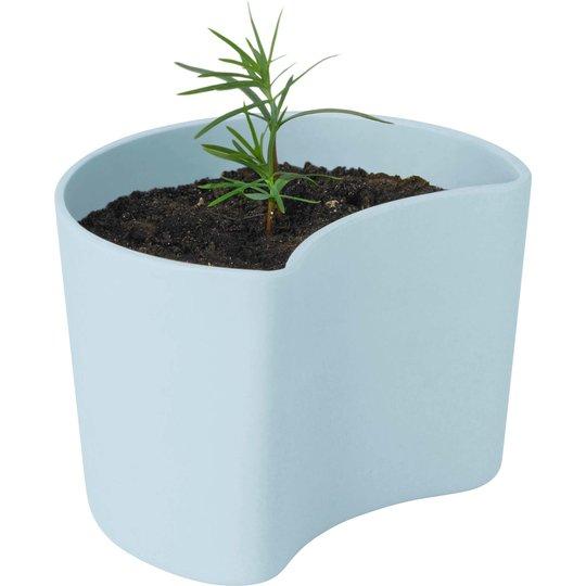RIG-TIG Your Tree Kruka med frön, Blå