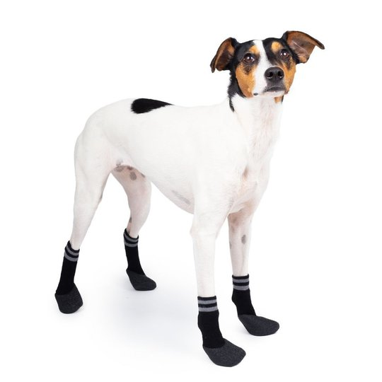 Basic Paws Hundstrumpor Svart 4-pack (3)