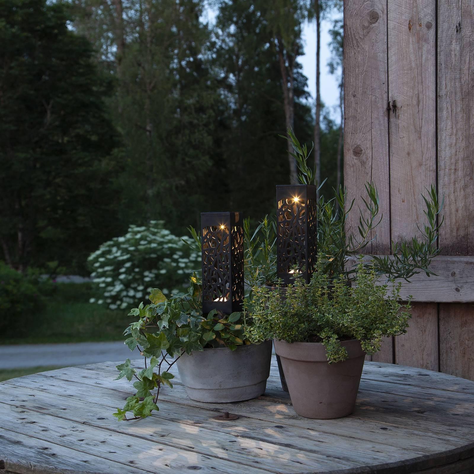 Izola-LED-koristevalo, maapiikki, 2 kpl