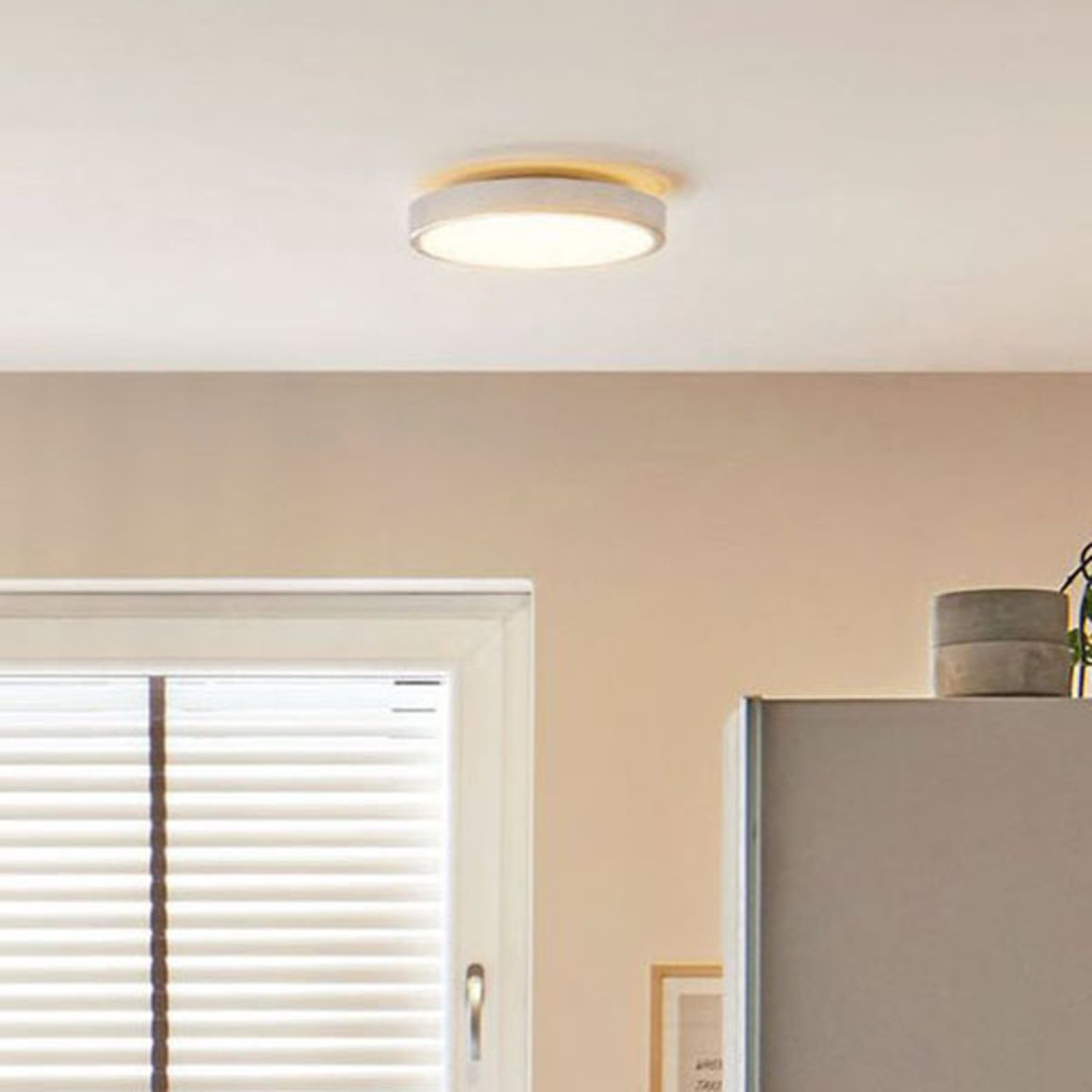 Paulmann Aviar LED-taklampe, IP44, dimbar