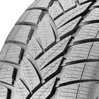 Dunlop Grandtrek WT M3 (235/65 R18 110H)