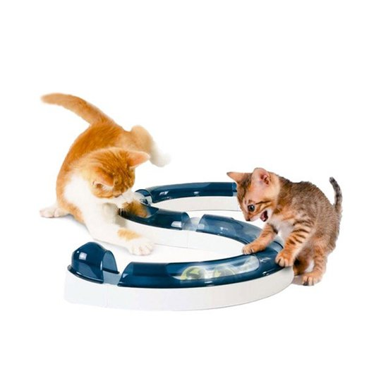 Cat It Senses Lekcenter