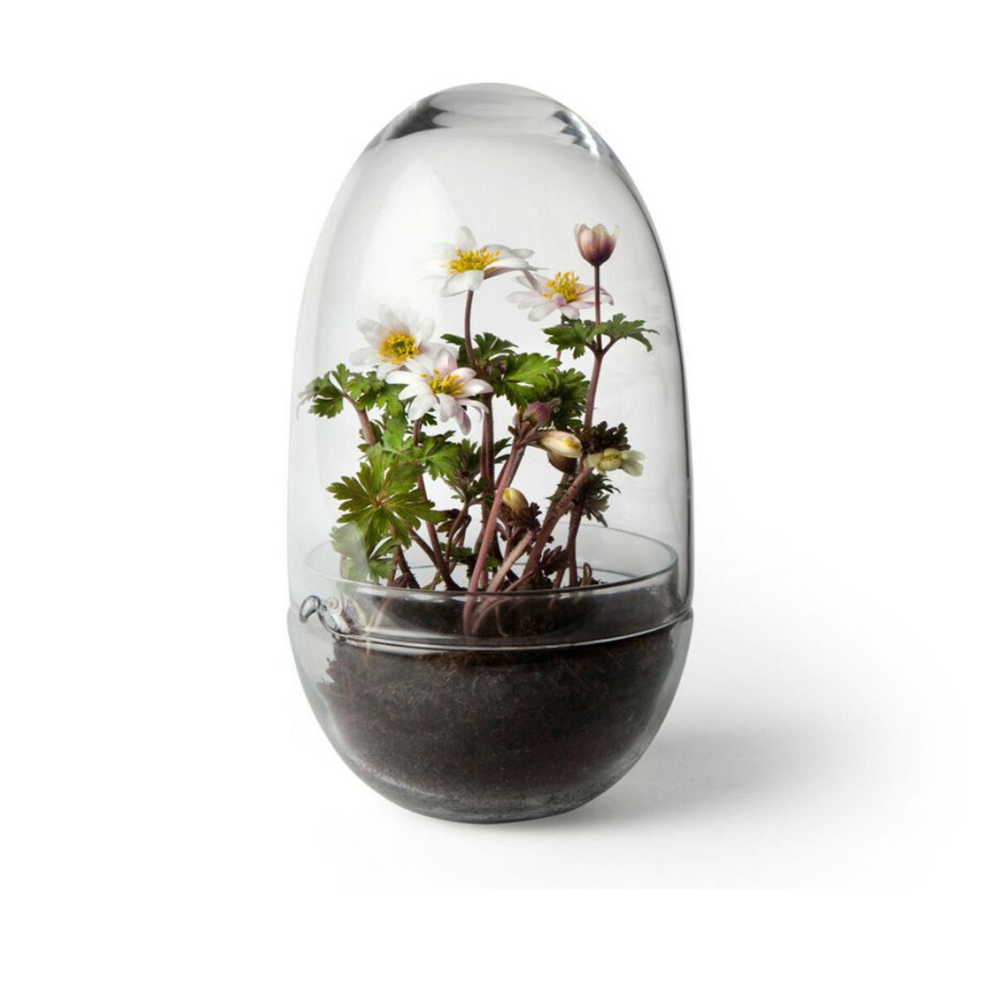 Design House Stockholm Växthus Grow Glas M