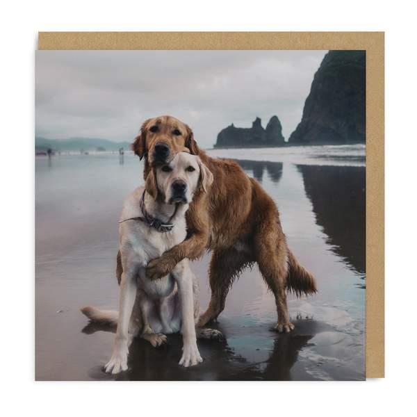 Beach Dogs Hug Square Greeting Card