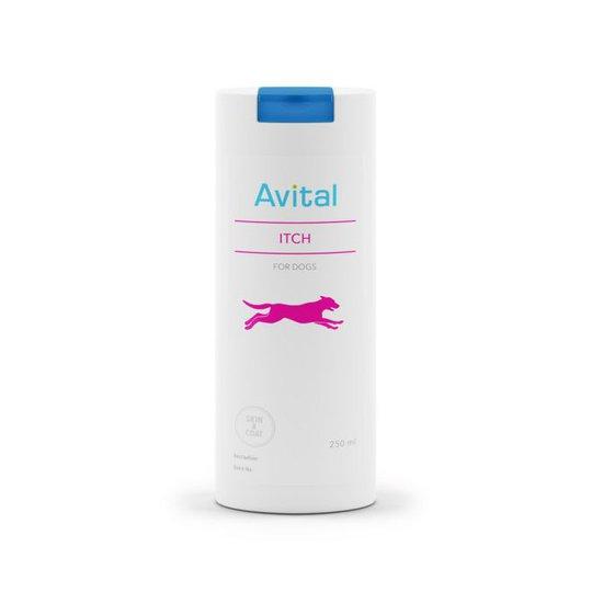 Avital Itch