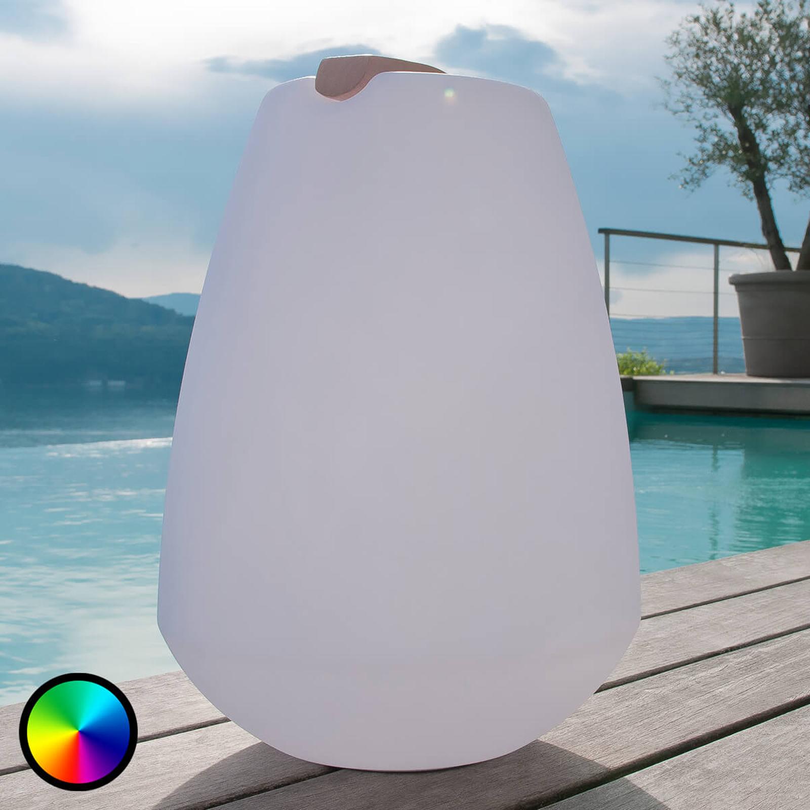 Kannettava LED-koristevalaisin Vessel