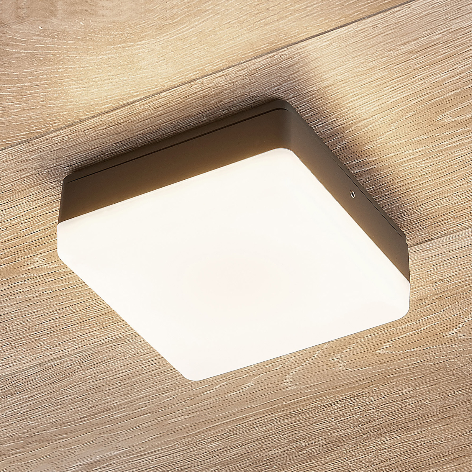 LED-kattovalaisin Thilo, harmaa, 16 cm, sensori HF