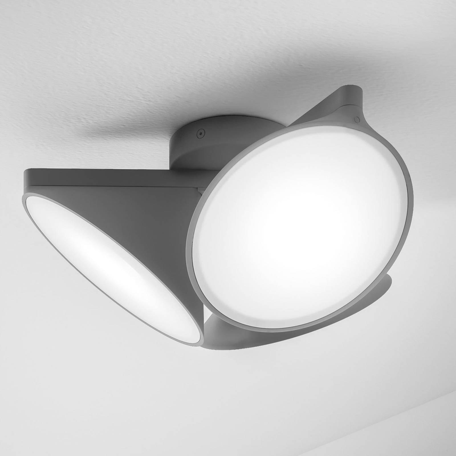 Axolight Orchid LED-taklampe, mørkegrå