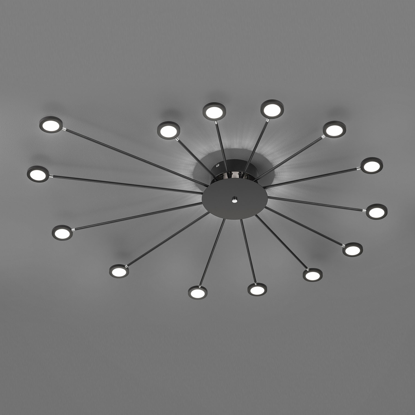 LED-kattovalaisin Peacock, 15-lamppuinen, musta