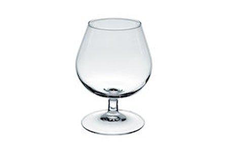 Degustation Cognacglass 41cl