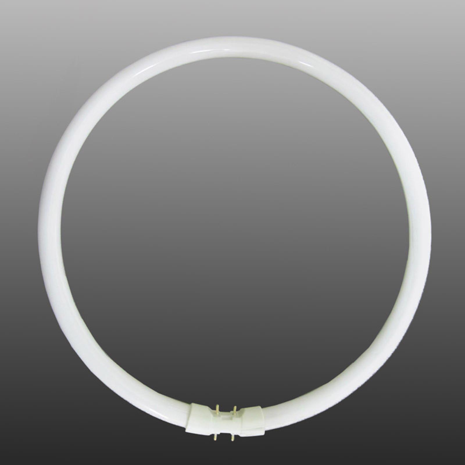 2GX13 T5 22W rengasloistelamppu, lämmin valkoinen