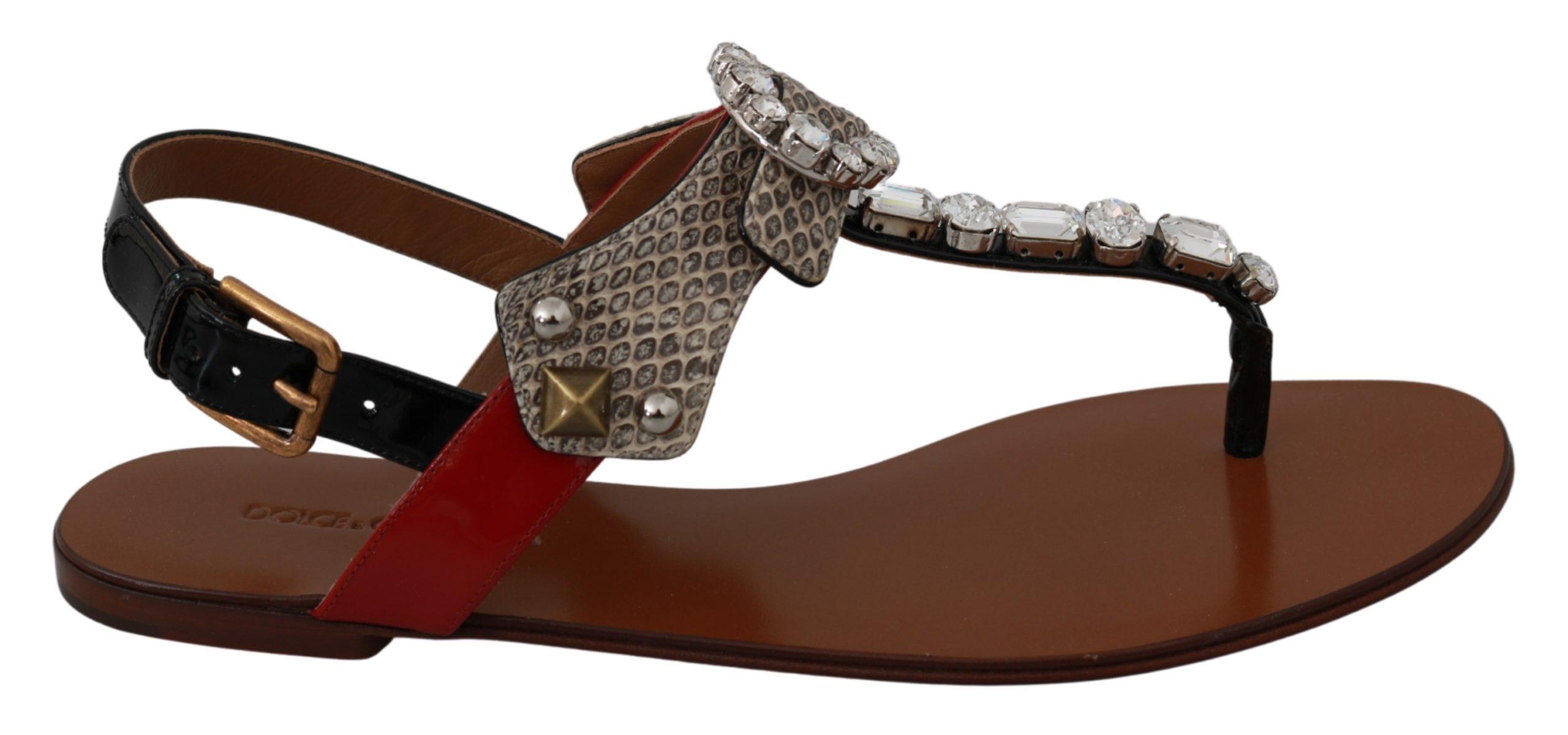 Dolce & Gabbana Women's Leather Ayers Crystal Sandal Brown LA6458 - EU35/US4.5