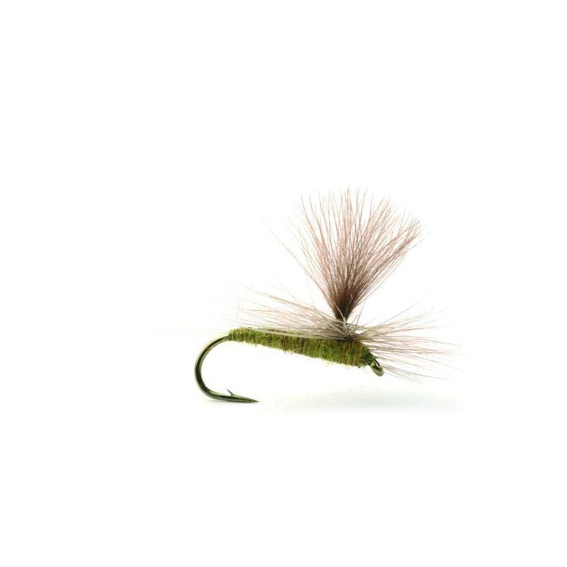 Baetis Medium Olive #16 Kjøp 12 fluer få gratis flueboks