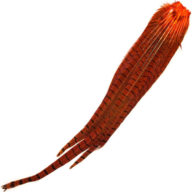 Cock Pheasant Complete Tails Dyed Orange Fasan halefjær komplett fra Veniard