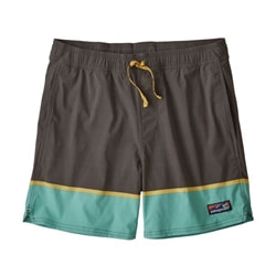 Patagonia M's Stretch Wavefarer Volley Shorts - 16 In.