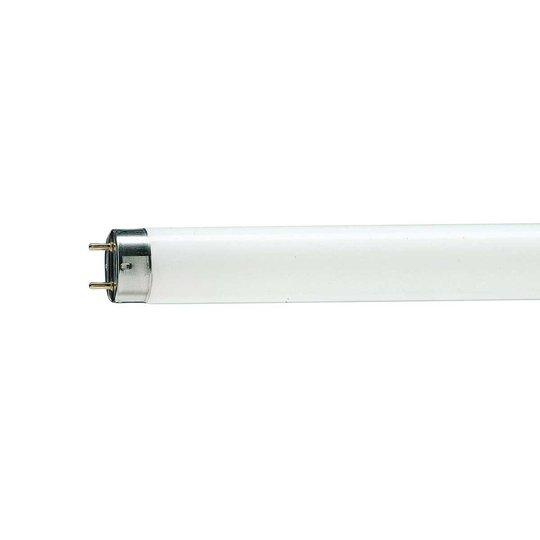 G13 T8 36 W Loistelamppu MASTER TL-D Graphica 950