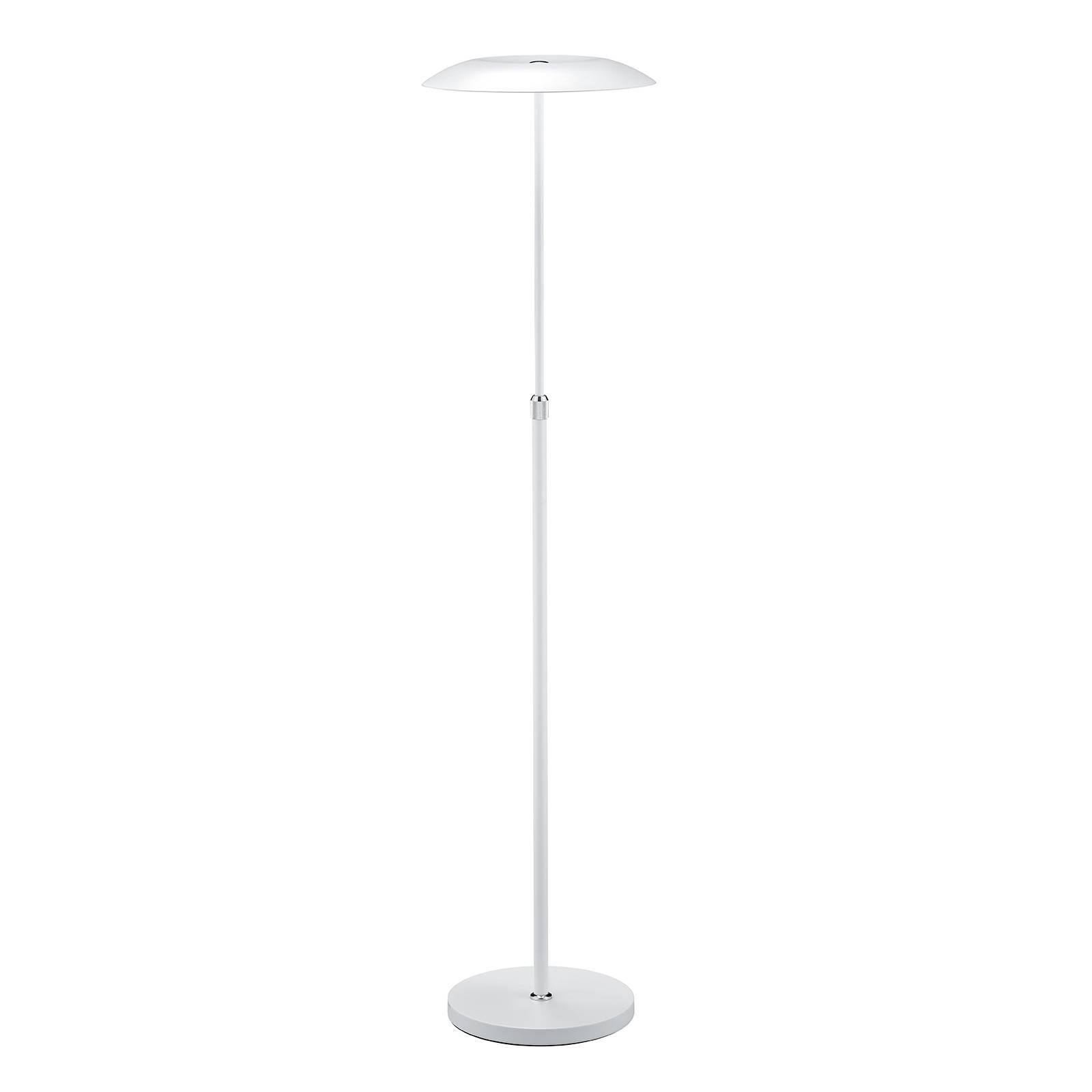 B-Leuchten Curling LED-lattiavalo valkoinen