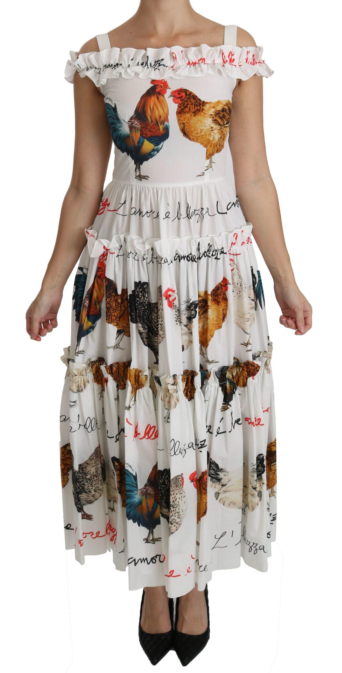 Dolce & Gabbana Women's Rooster Sheath Midi Cotton Dress White DR2140 - IT38|XS